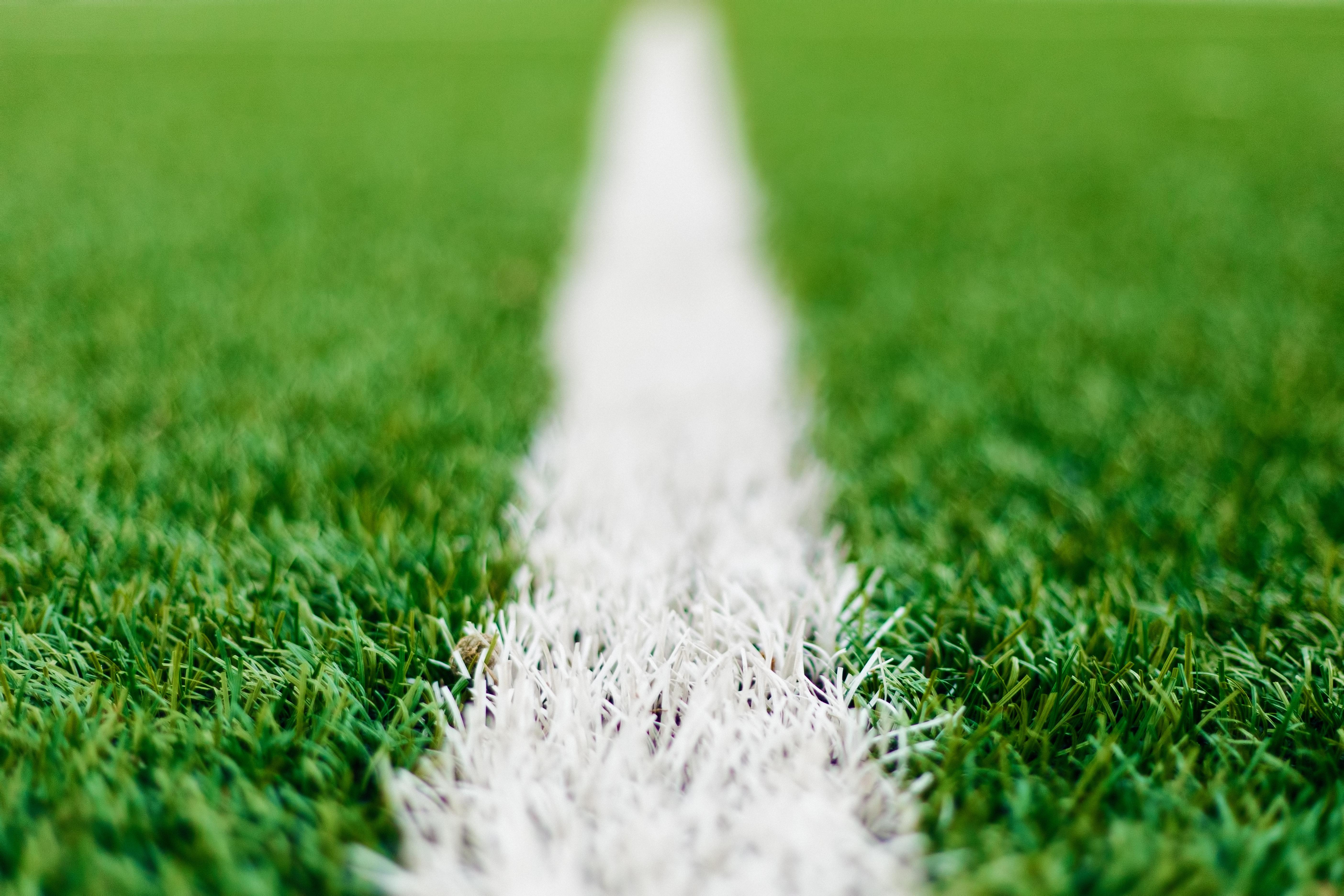 Soccer field grass hd free stock photos download 7465
